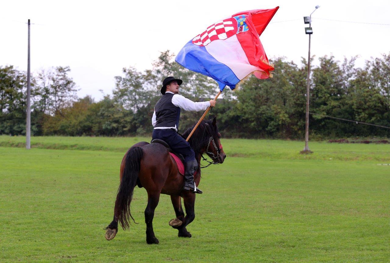 Izložba izvornih i zaštićenih pasmina konja